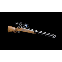 Buy Artemis Airguns Online Best Price in Pakistan